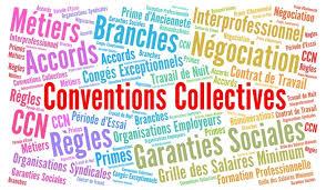 Convention Collective Nationale Production Agricole / Cuma  Episode 7 : Classification des emplois